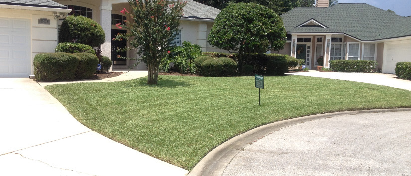 lawn care example