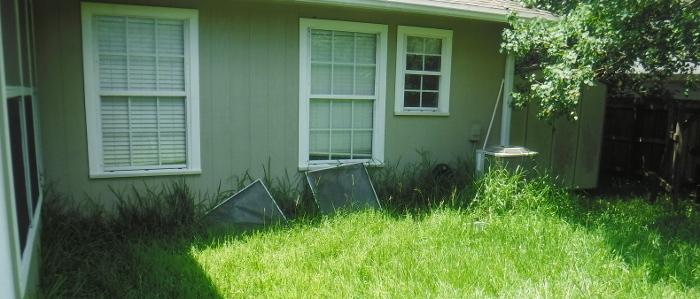 tall grass clean up