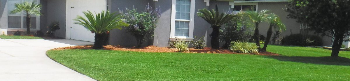 Kelly Lawn & Property Maintenance